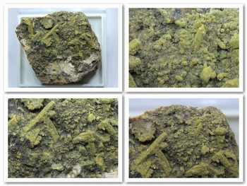 Parsonsite and torbernite [radioactive Mineral]
