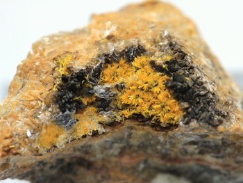 Boltwoodite [radioactive Mineral]