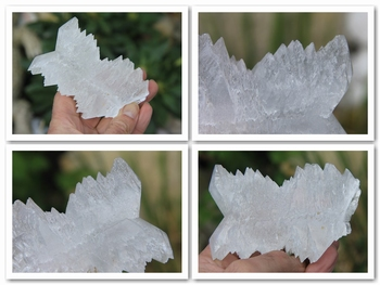 Gypsum var. Selenite so called - Fish-tail Twin
