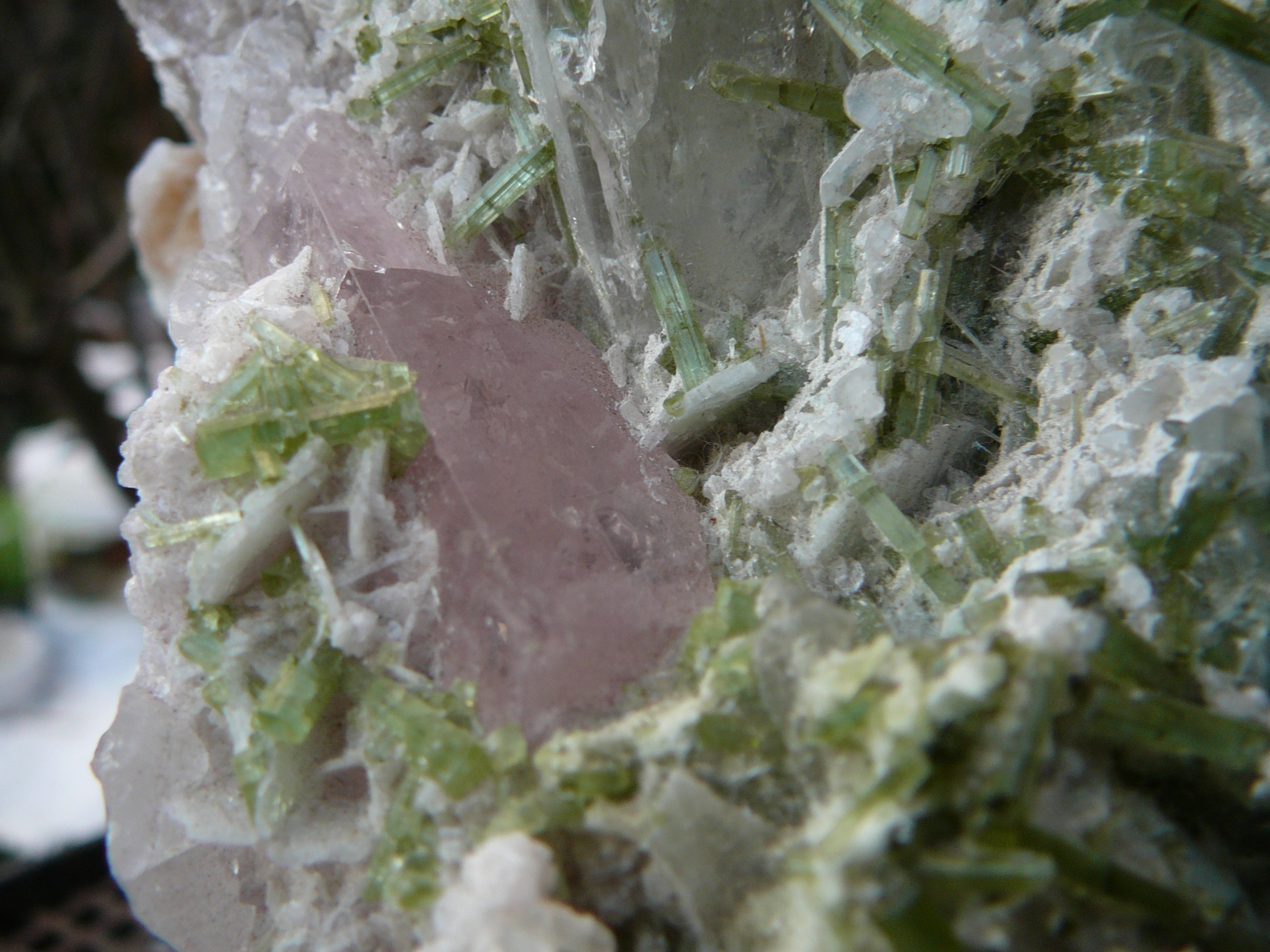 Beryl (var. Morganite) with green tourmaline crystals
