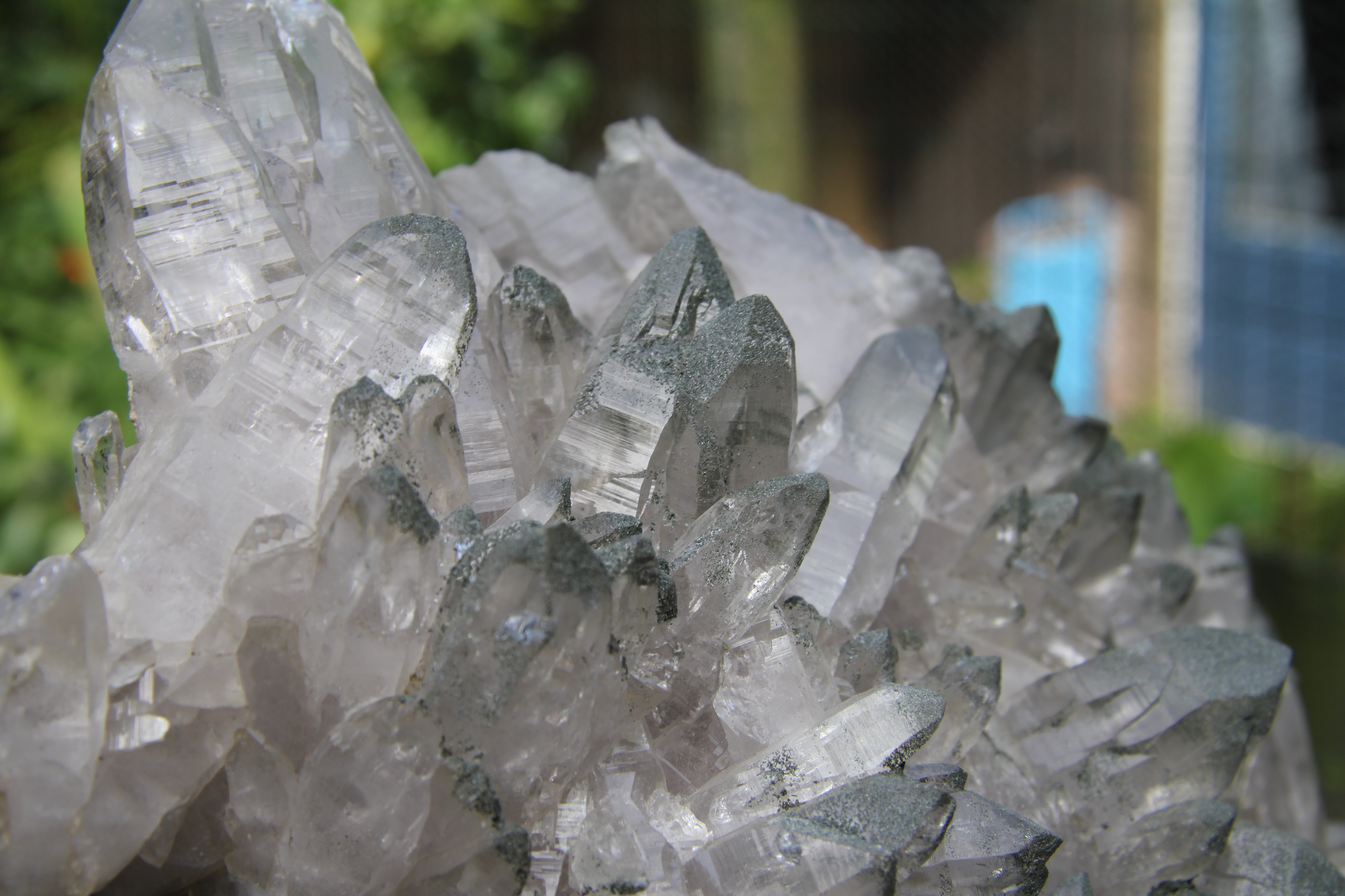 Clear quartz crystals with dark green Chlorite