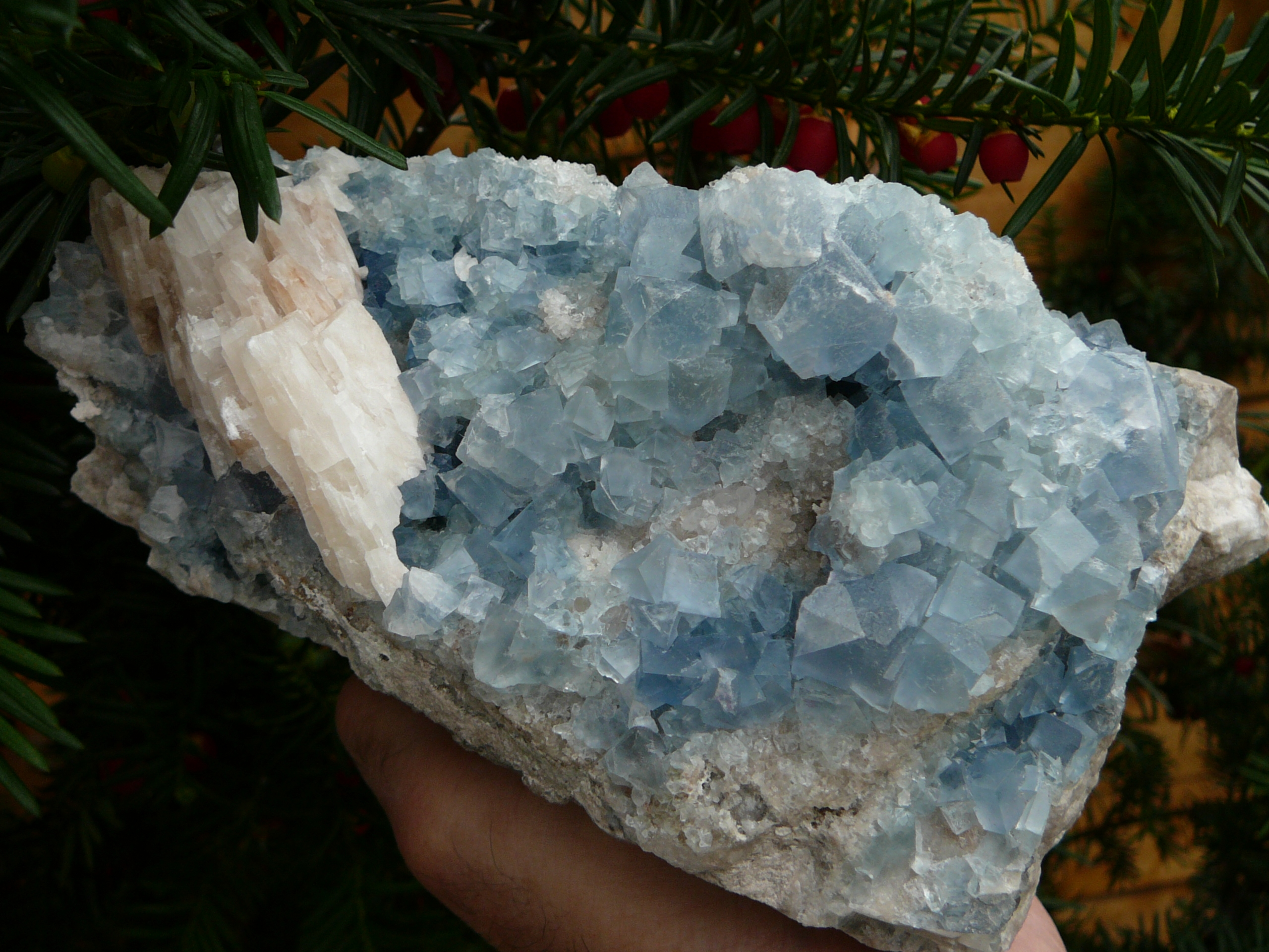 Fluorite (light blue) - Bingham.