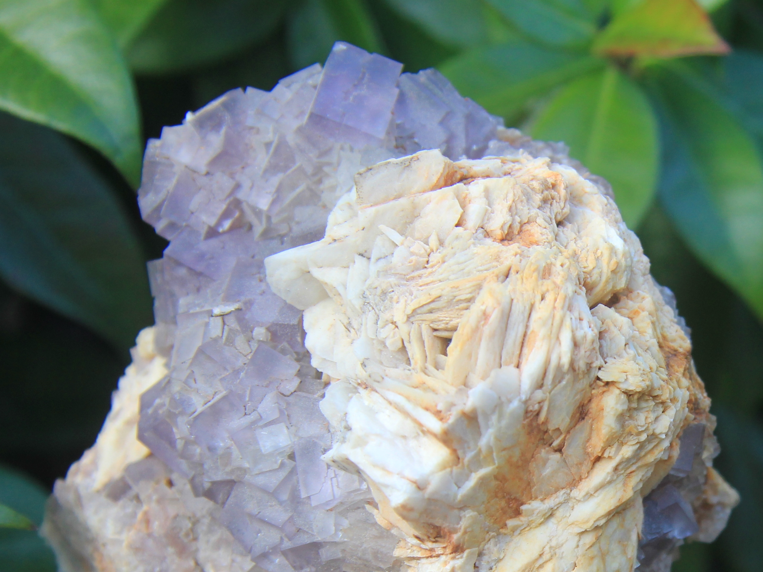 Fluorite and baryte