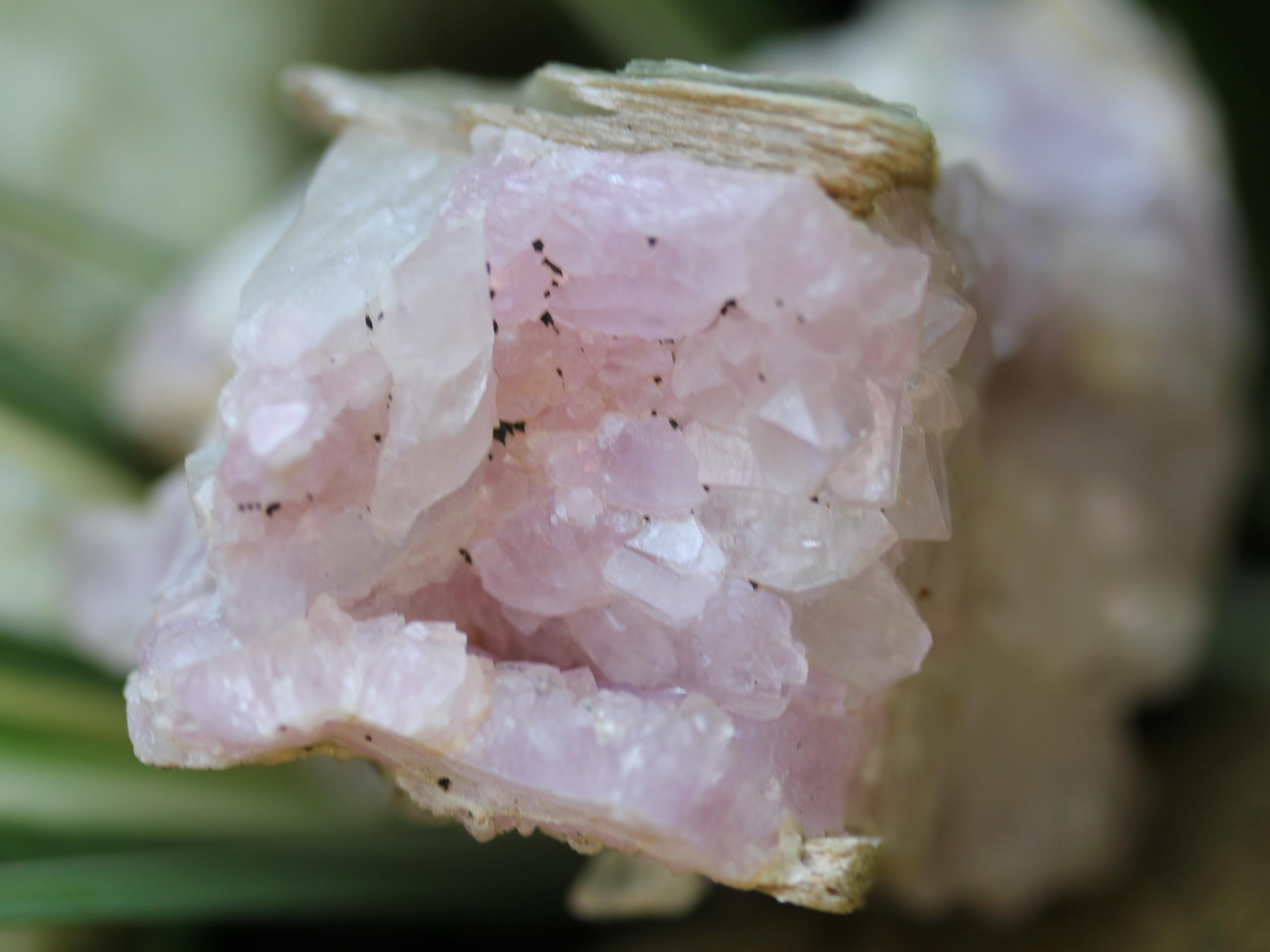 Light-colored rose quartz crystals