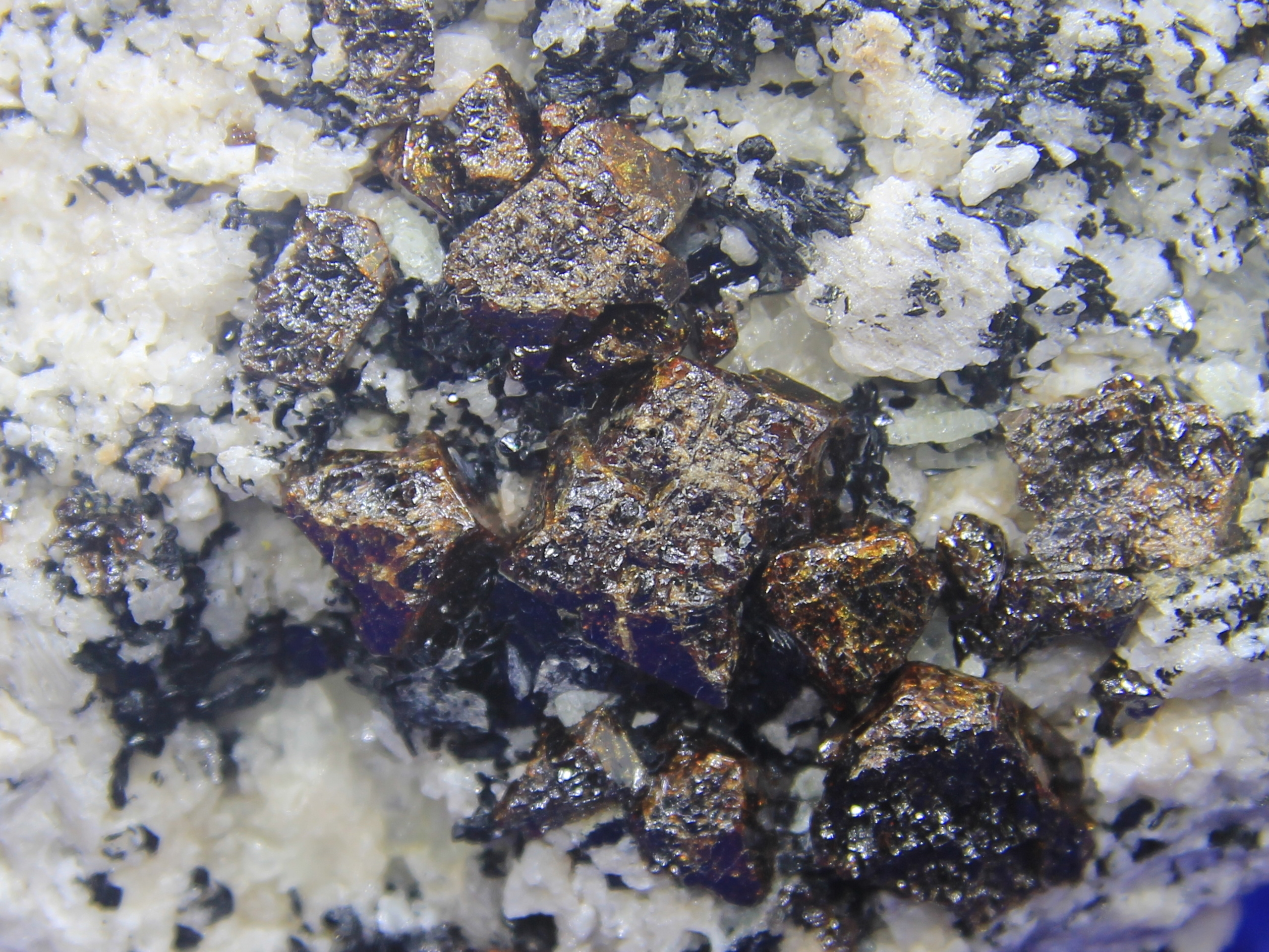 Pyrochlore (fluorcalciopyrochlore) and annite