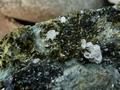 Byssolite, Epidote, Augite and Apatite