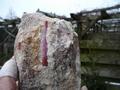 Red corundum (ruby) crystals embedded in migmatite