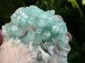 Fluor-Apophylite crystals