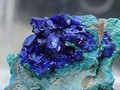 Electric-blue, crystals of azurite on a malachite matrix